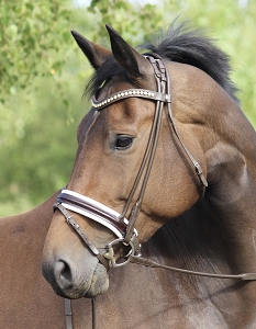 OS Munich Rolled Snaffle Bridle - Custom