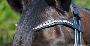 OS Bicolor wave browband with Clear XL crystals and Gold pearls