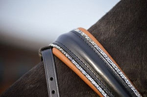 Otto Schumacher Noseband for Rolled Bridles